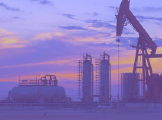Accounting and audit of oil and gas business